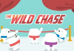Casumo casino darmowe spiny na slot the wild chase 3 2